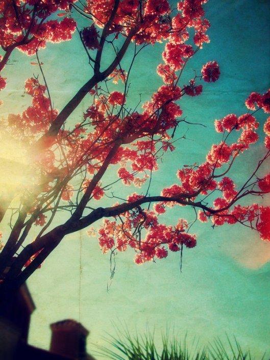 springtime_sing_by_dan0swenson